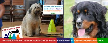 journee formation initiation comportementalisme canin