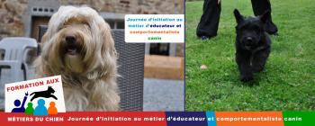 formation_chien_educateur_comportementaliste_canin_avril_2018.jpg